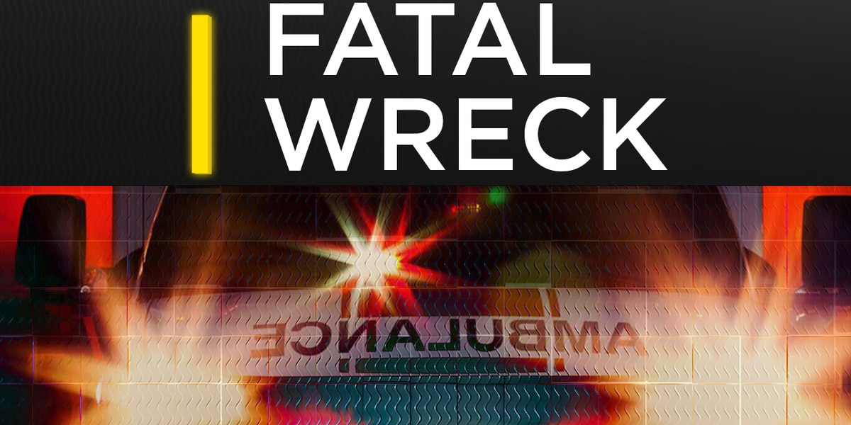 17-year-old driver killed in Andrews wreck