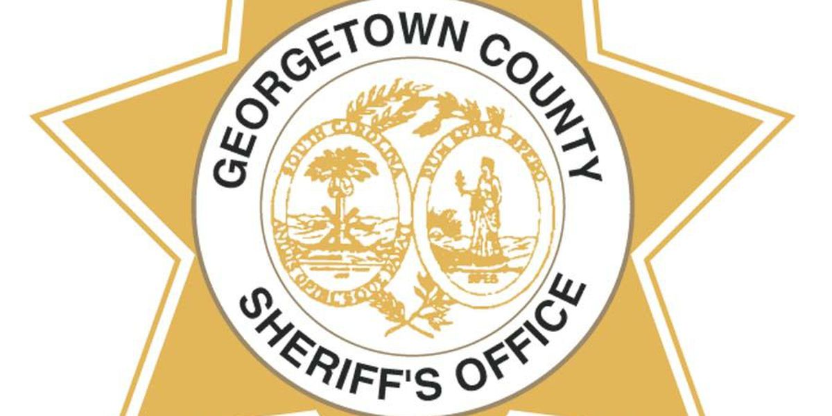 Georgetown County Deputies to conduct driver's licenses checkpoints in August