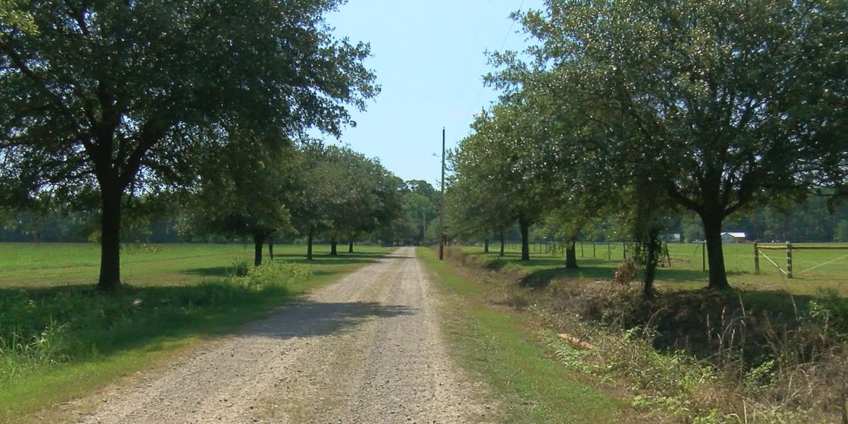 New Thompson Farm location set to open this fall