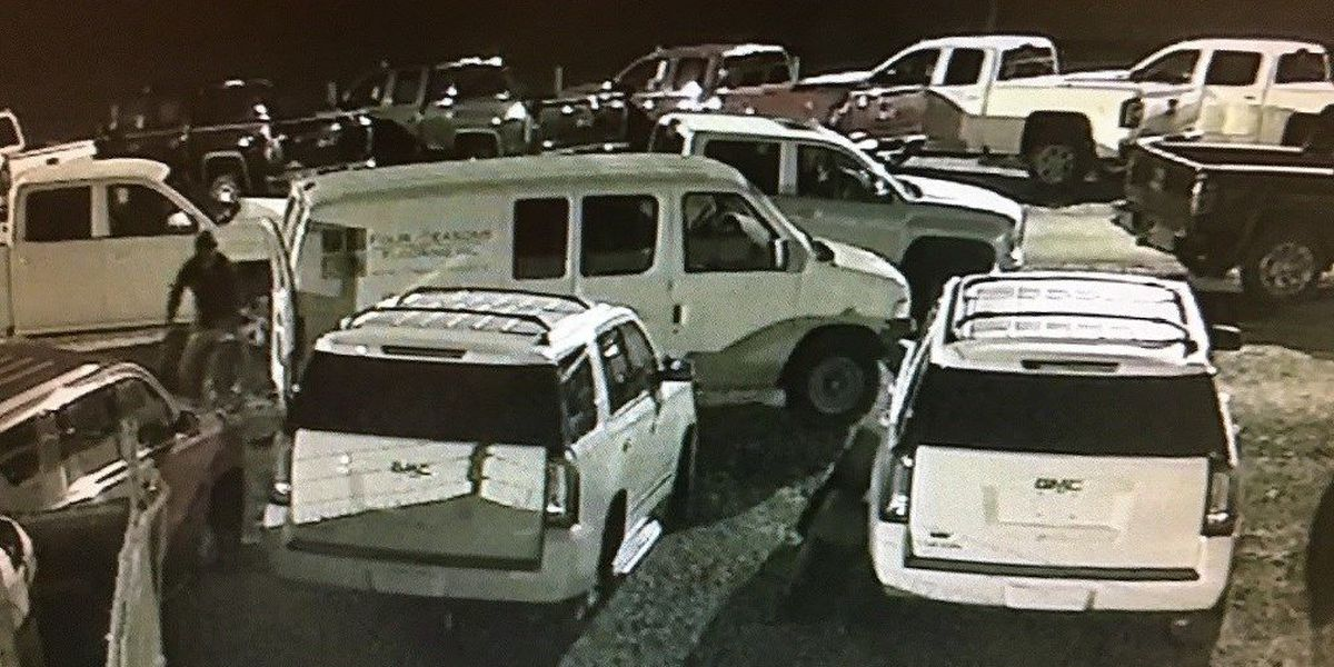 Little River car dealership hit for second time this summer, wheels stolen
