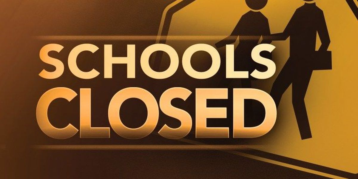 Horry County Schools to provide school schedule update over weekend; other cancellations, early dismissals posted due to Irma