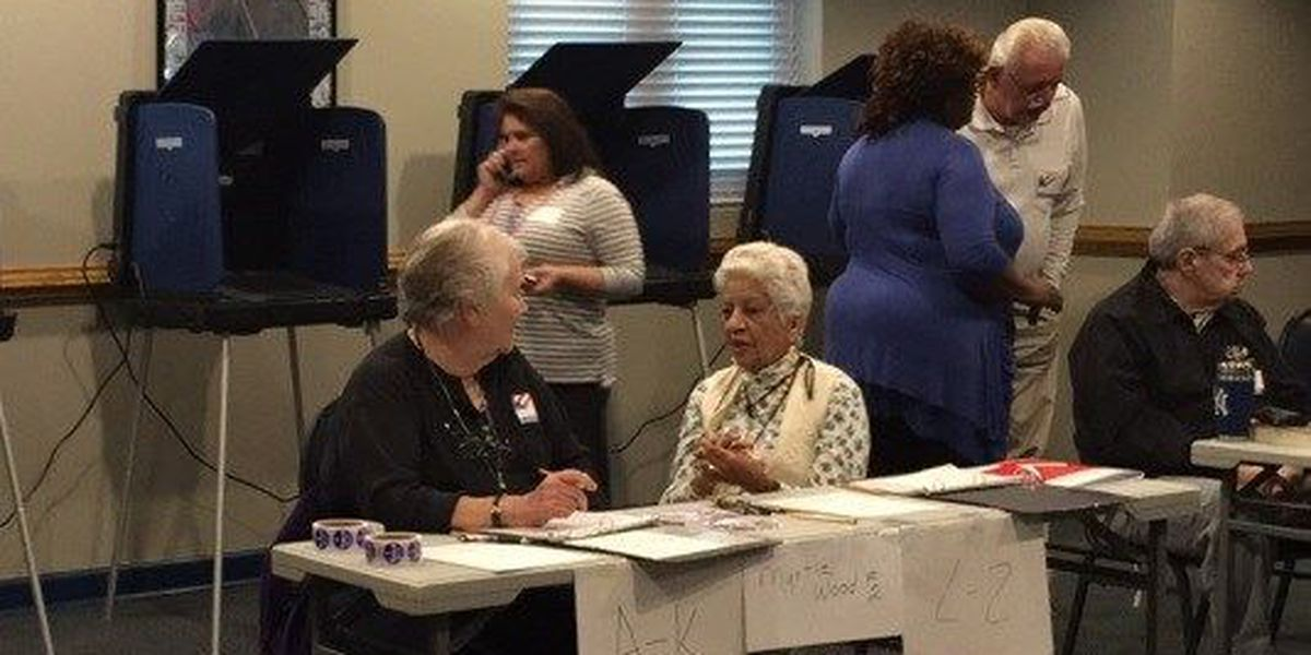 Voters head into polls for South Carolina Democratic Primary