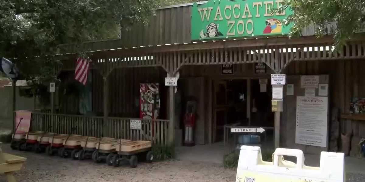 PETA calls on police to investigate Myrtle Beach zoo