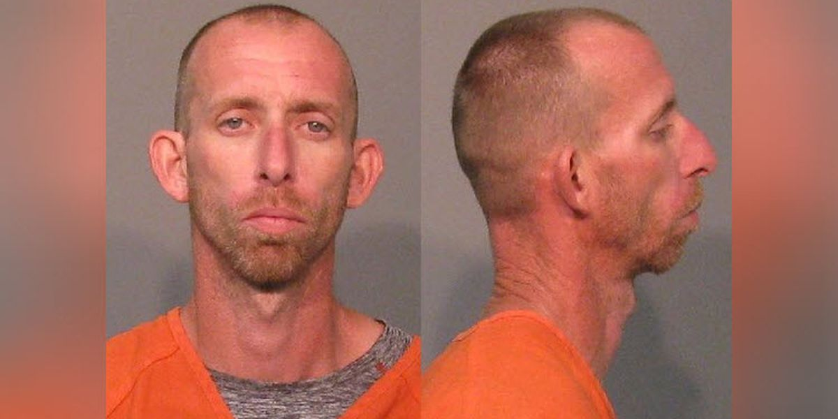 Man facing 58 charges related to suspected dog fighting after woman attacked in York Co.