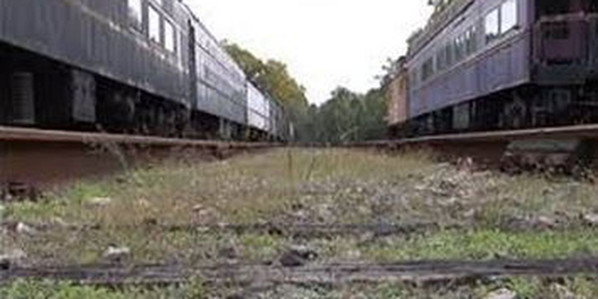 Work on rail lines underway in Horry County, RJ Corman hopes to bring in industry and jobs.