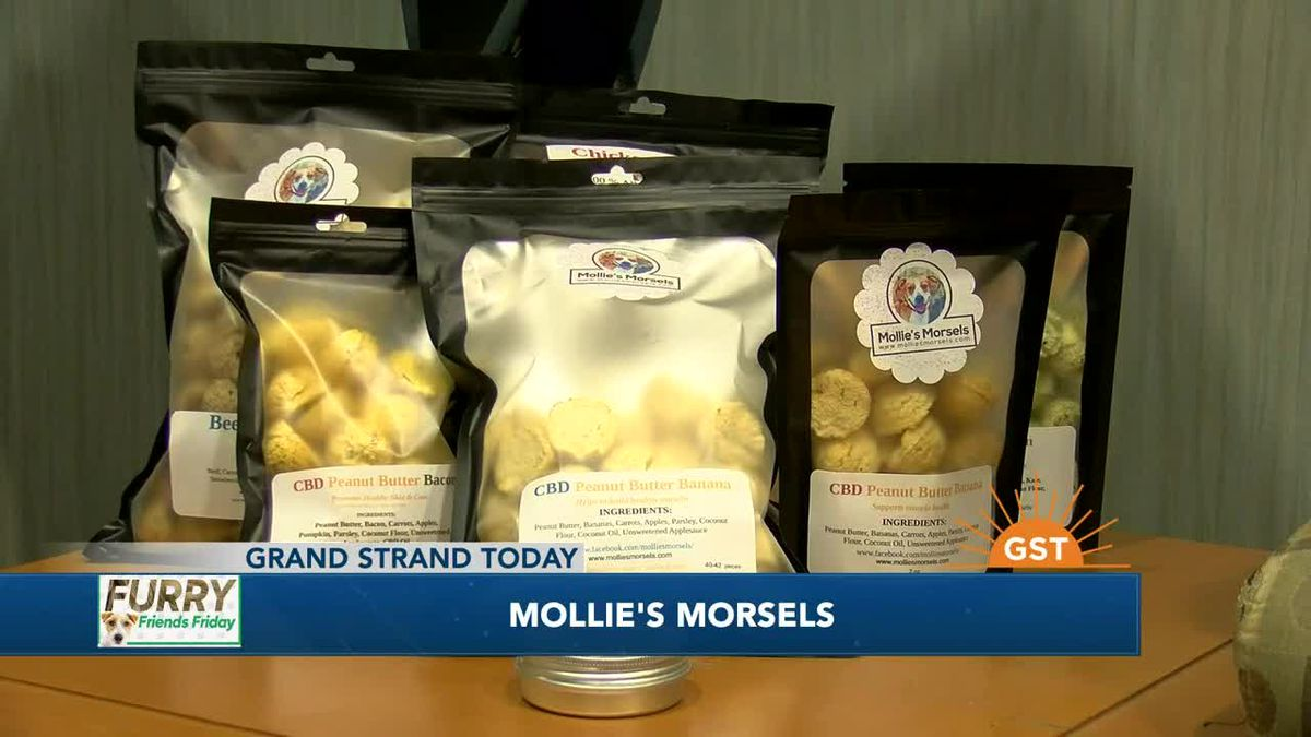 Furry Friends Friday with Mollie's Morsels