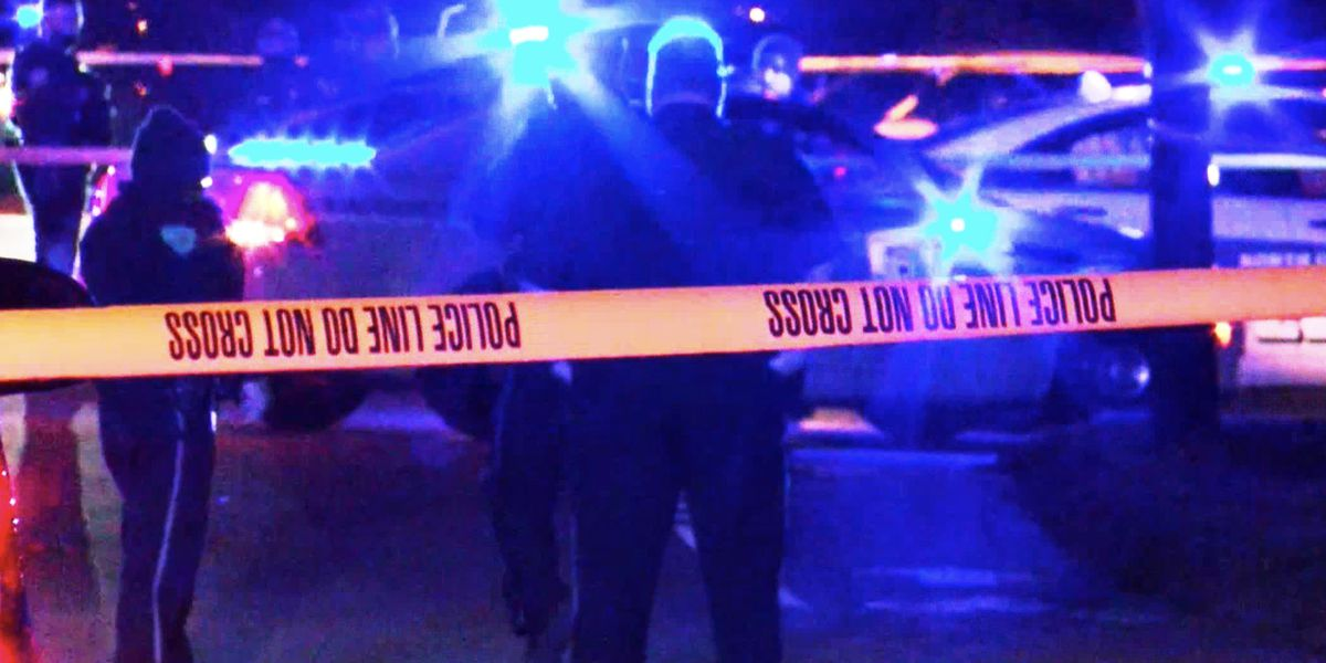 Murder, carjacking suspect shot following chase with police in Charleston