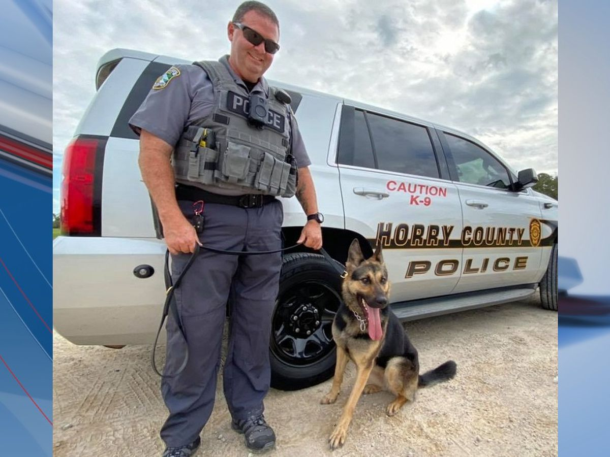 Horry County welcomes new K-9 to the team