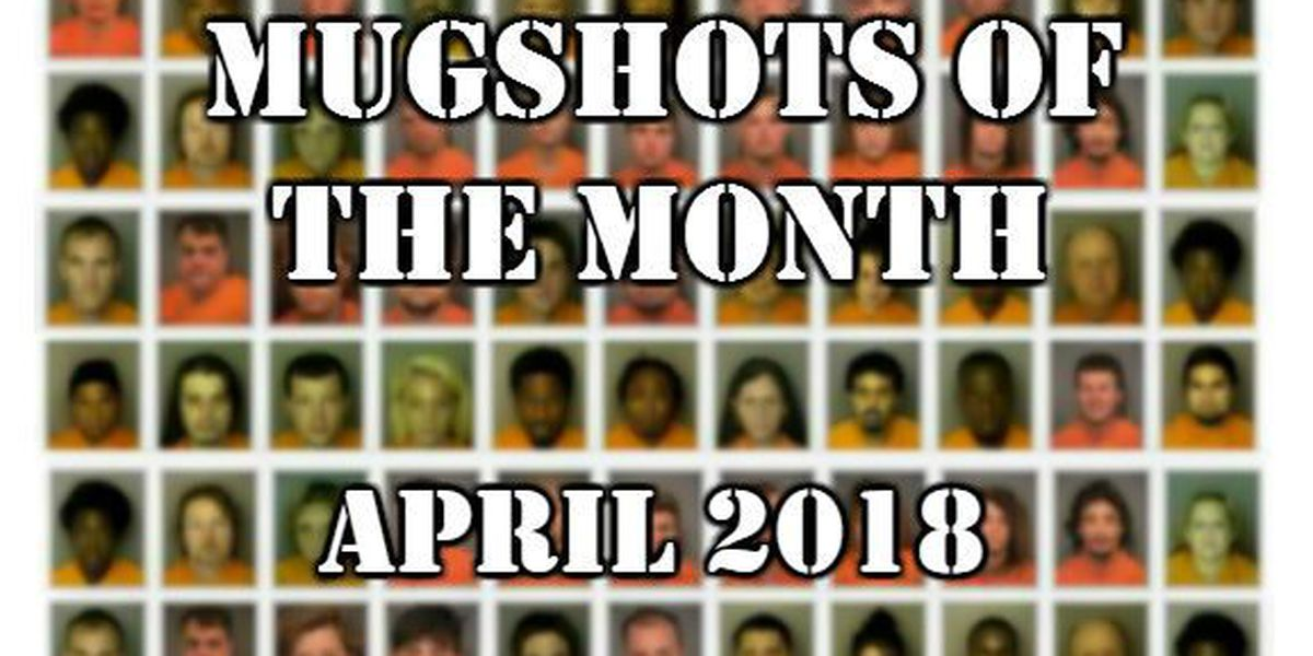 Mugshots of the Month - April 2018