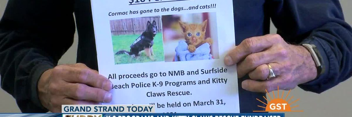 Furry Friends Friday- K-9 programs and Kitty Claws Rescue fundraiser
