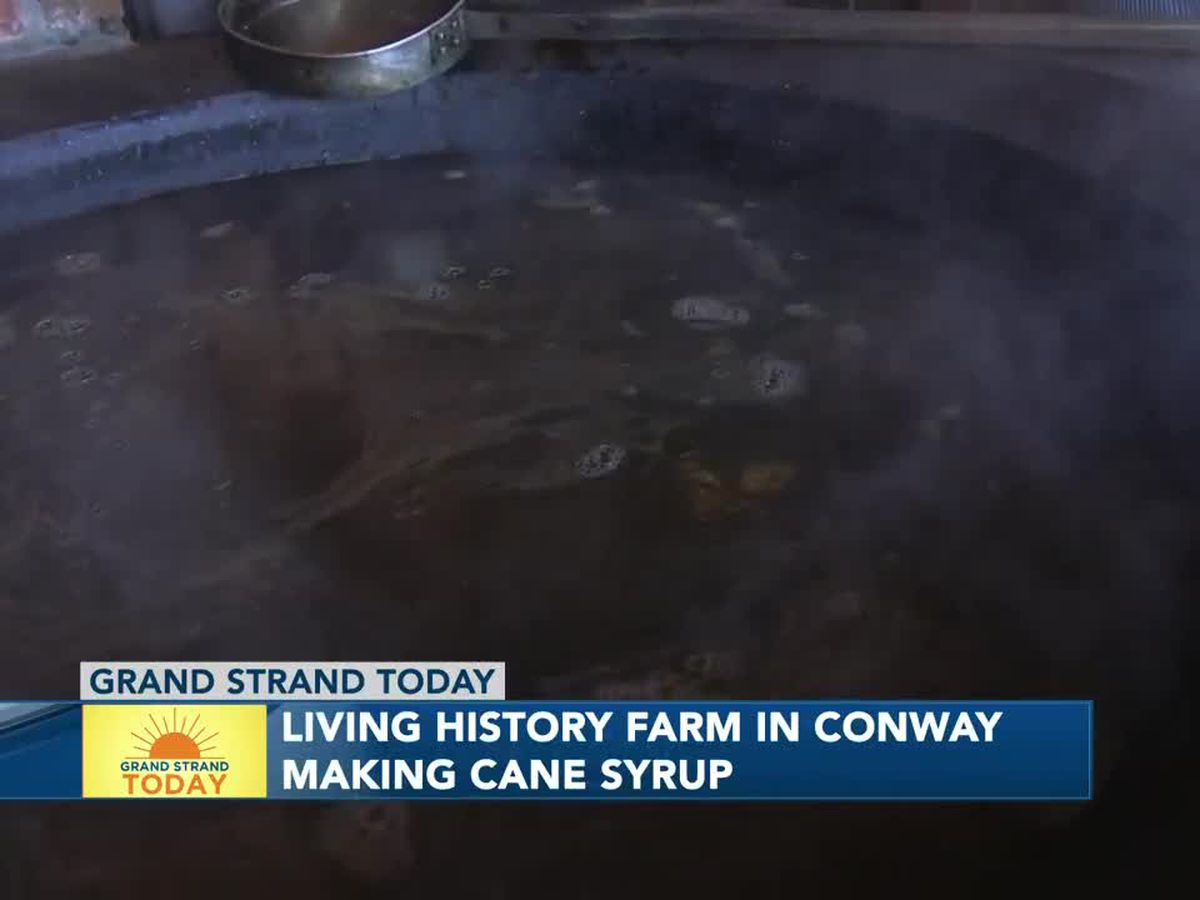 Making cane syrup at the L.W. Paul Living History Farm