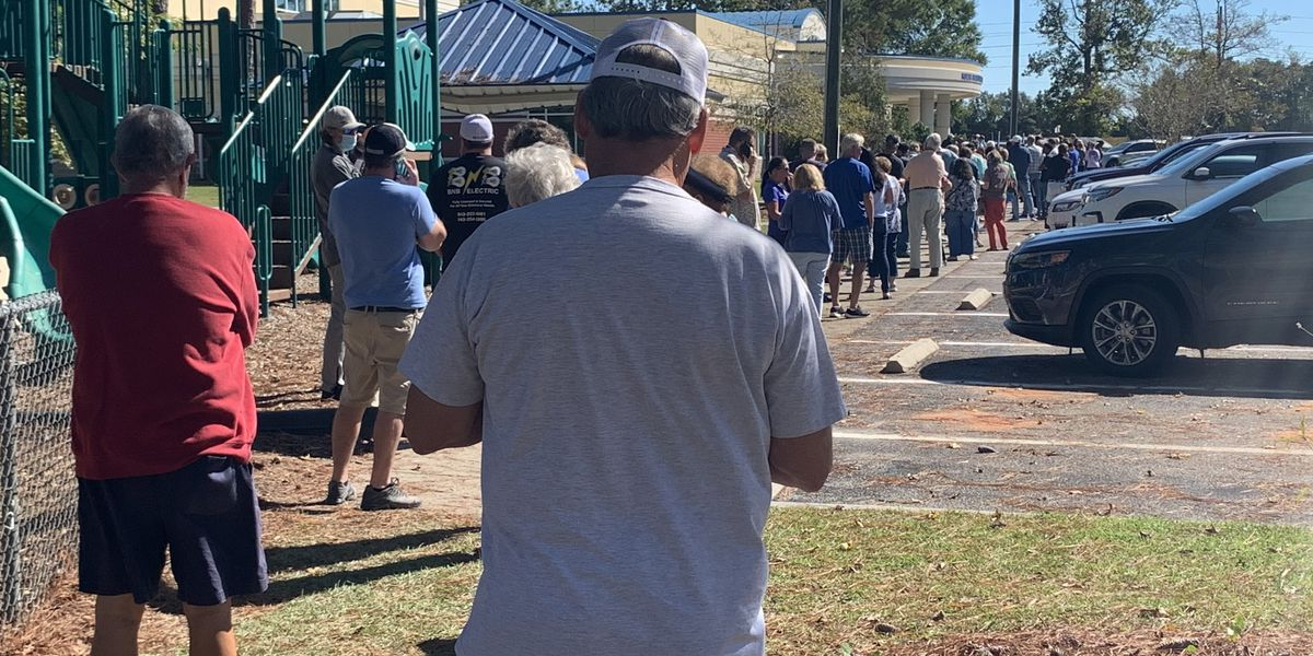 'It's very important to make sure our vote counts': People wait hours to vote absentee in Horry County