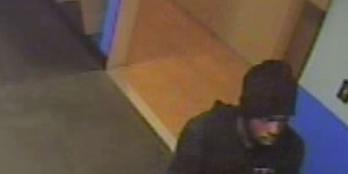 Alleged burglary suspect swipes victim's credit card while on the run