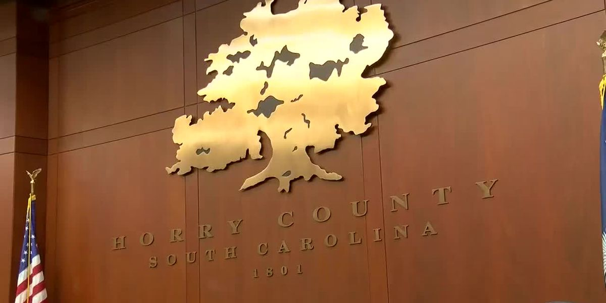 Horry County Council passes face mask ordinance; goes into effect immediately