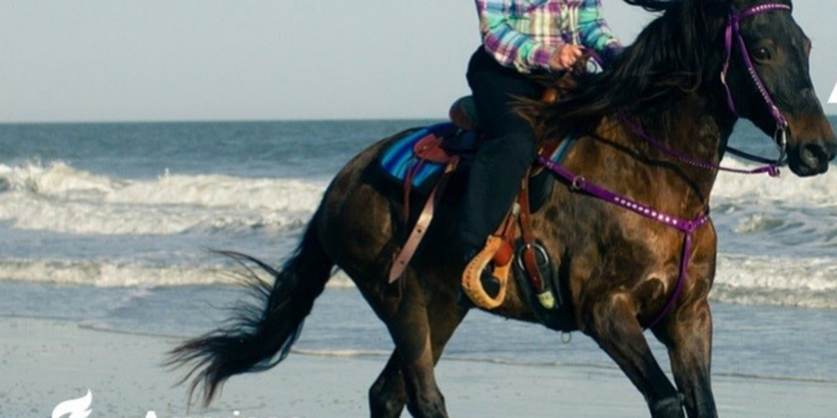 Equestrians saddle up for 35th Annual American Heart Association Beach Ride
