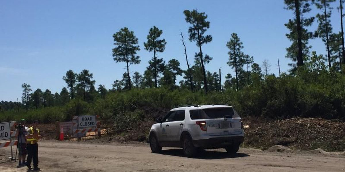 Conservation groups take case against International Drive to S.C. Supreme Court