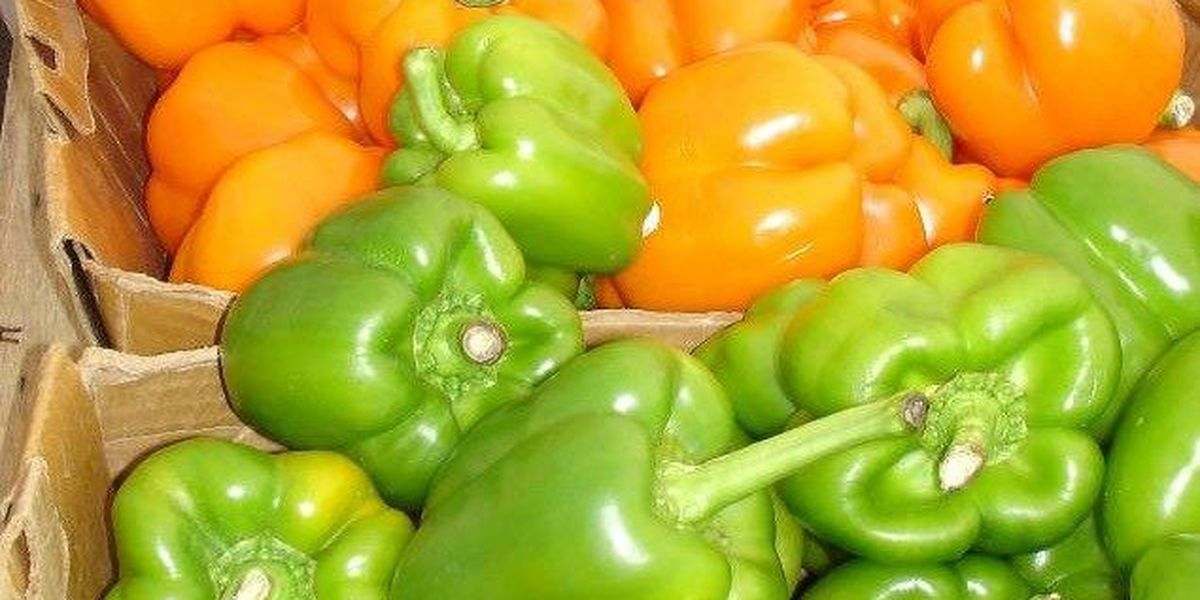 Myrtle Beach working to allow farm stands throughout city