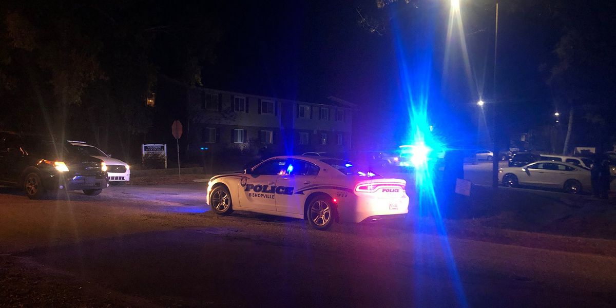 Officials: 3-year-old injured during drive-by shooting in Bishopville