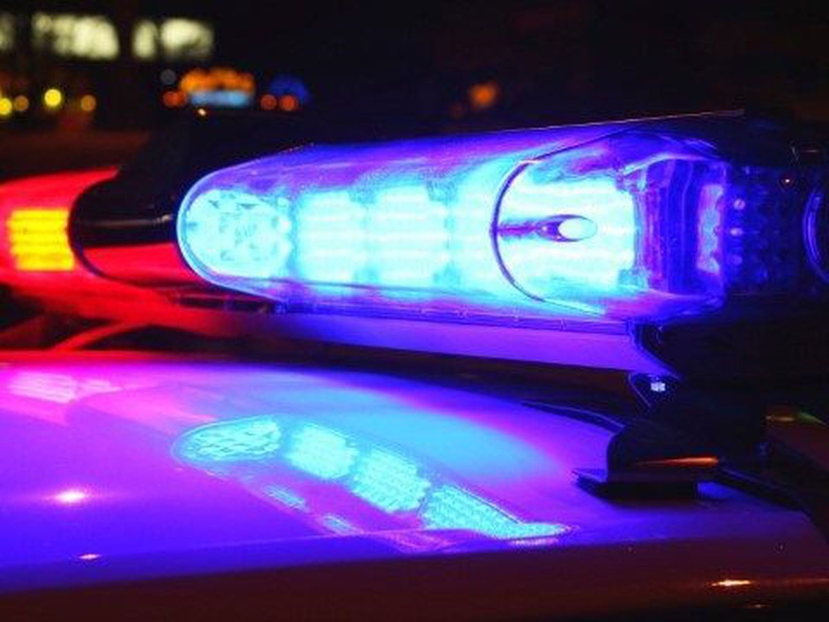 Report: Man stole woman's purse at gunpoint, fled the scene