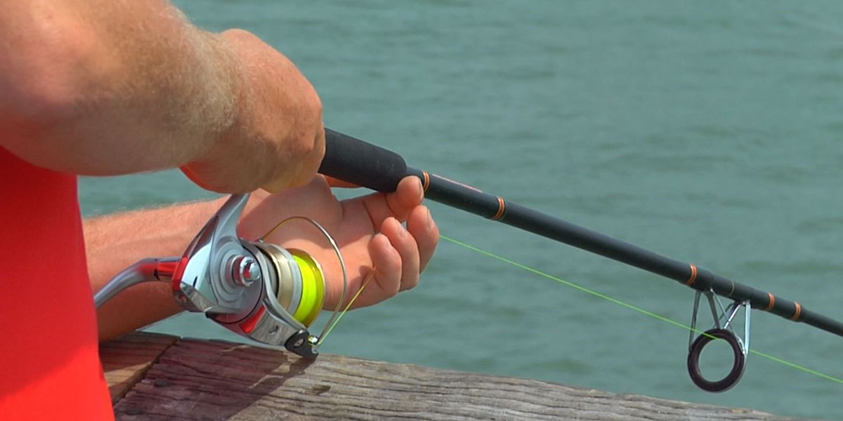 New size, bag limits for flounder