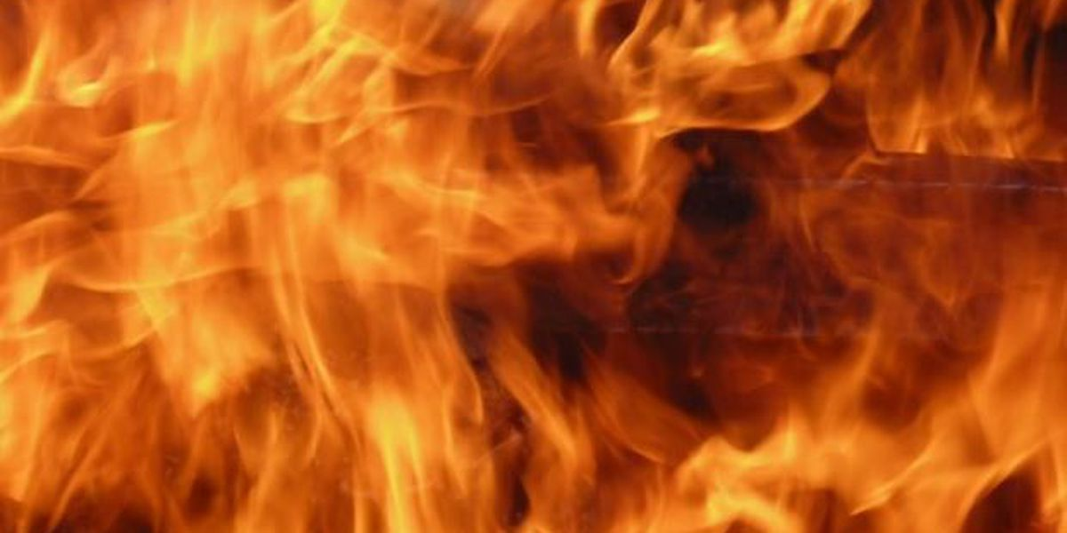 Mullins Fire Rescue put out brush fire