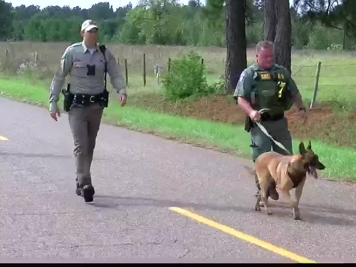 Scotland County officials say no cause for concern over weekend searches