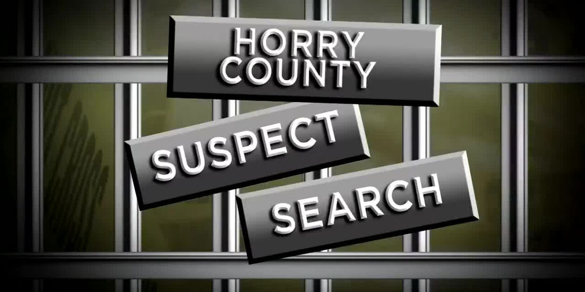 Suspect Search: 03-21