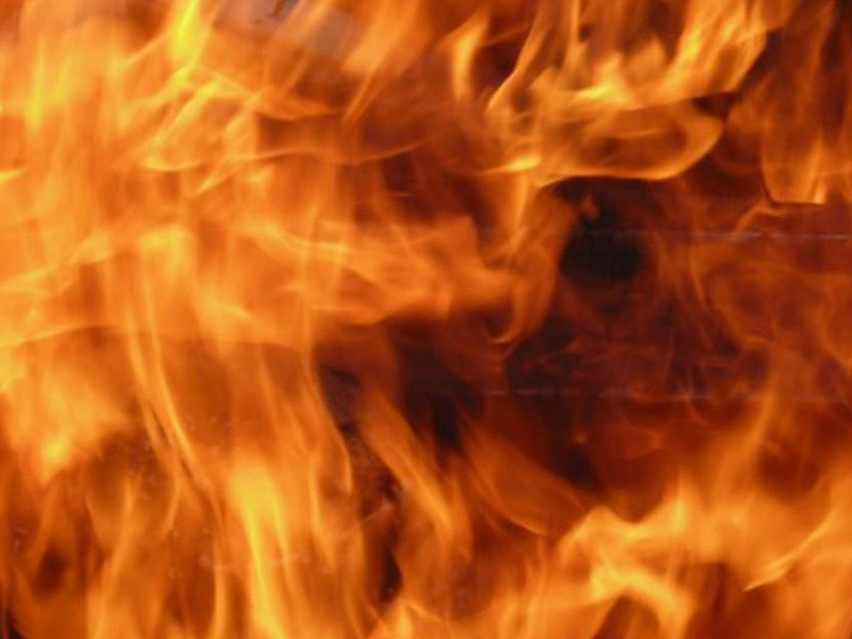 Prescribed burn set for Friday at Hobcaw Barony