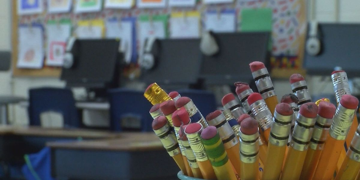 S.C. Board of Education issues public reprimand against former FSD1 elementary school teacher