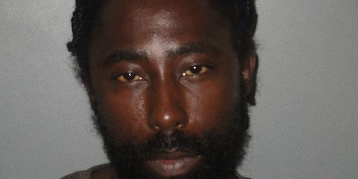 Williamsburg County armed robbery suspect arrested