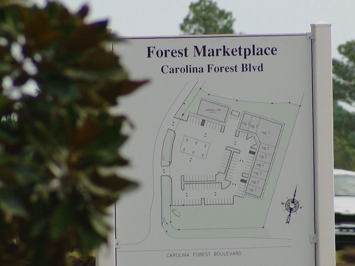 'Just keep the integrity of it:' Some concerned over new strip mall coming to Carolina Forest