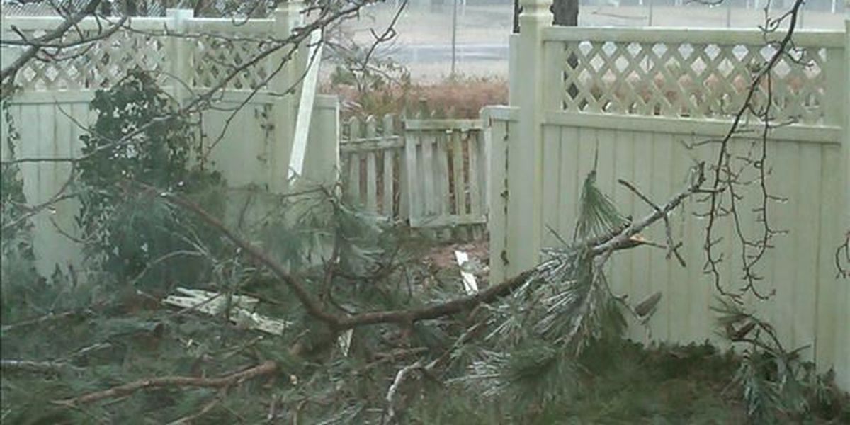 One year since winter storm deals significant damage to the area