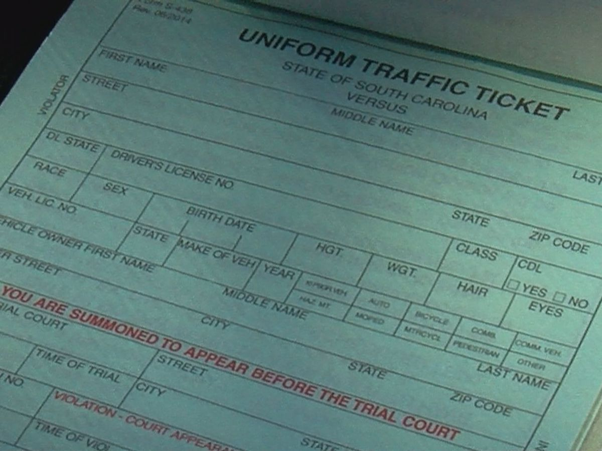 WMBF INVESTIGATES: Statistics show stereotyping, targeting in traffic stops