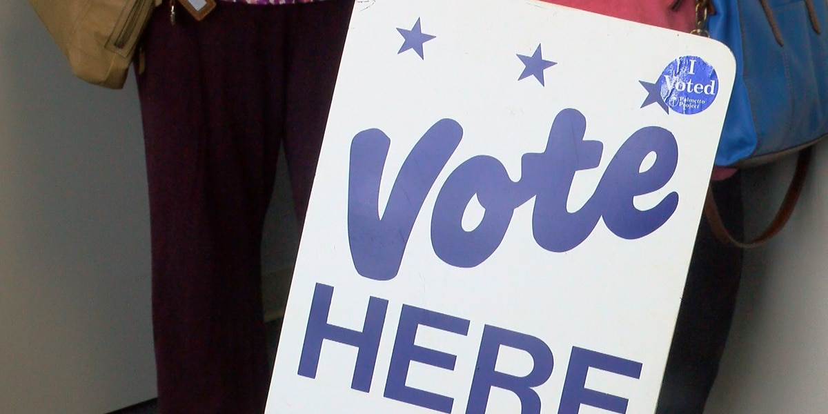 Horry County prepares for 2018 election