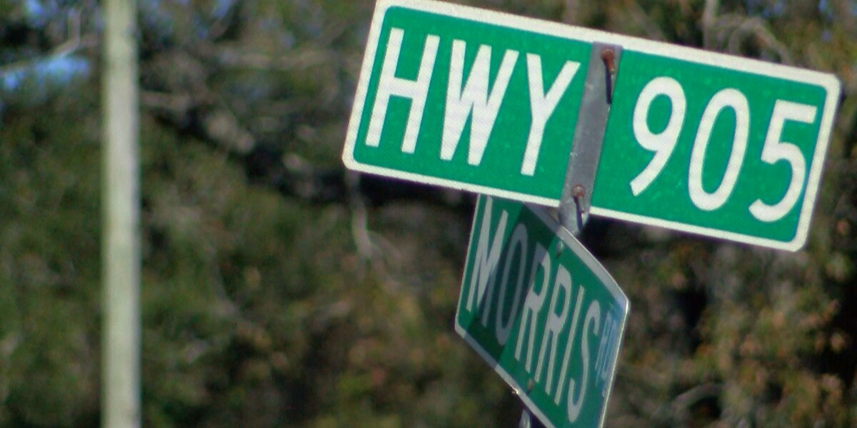 Thousands of homes proposed near SC 905