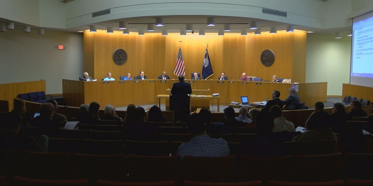 Myrtle Beach City Council discusses business license reform, sports tourism, flood resilience