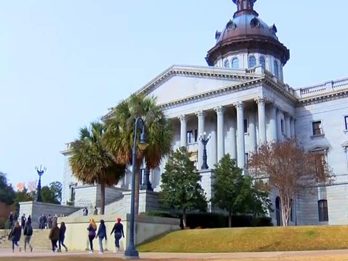 State lawmakers will push to name June 'Black Lives Matter Month' in S.C.
