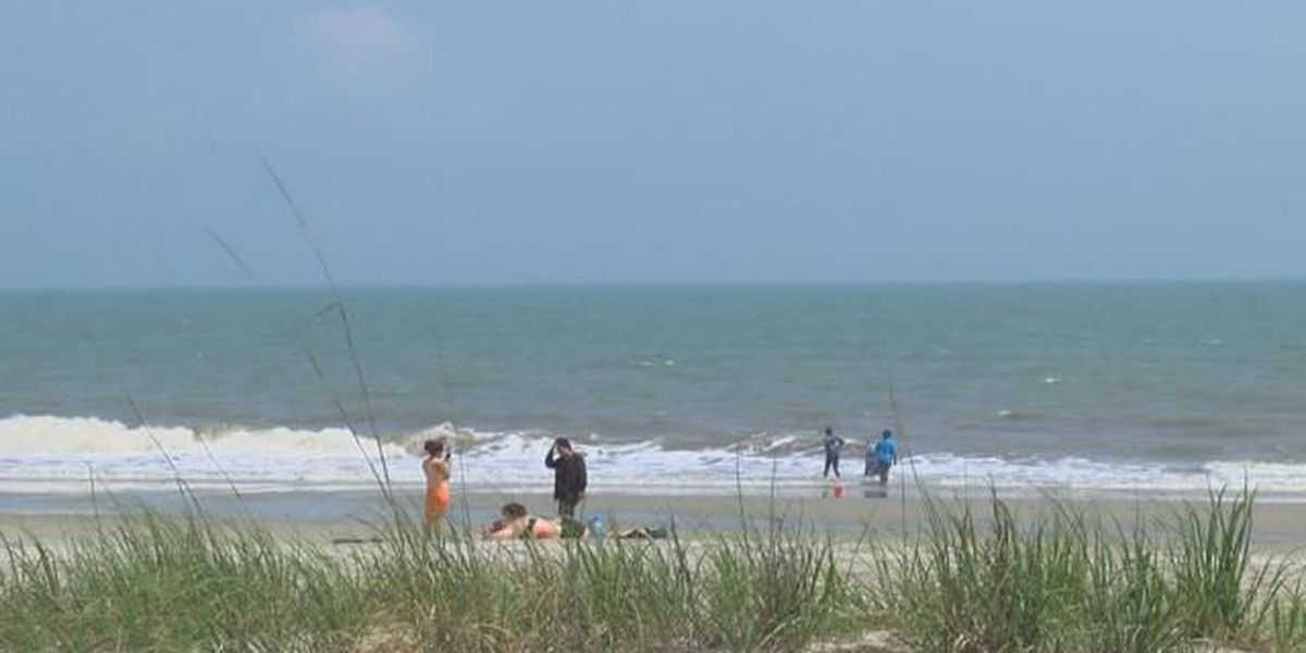 Georgetown County Council votes to oppose offshore drilling