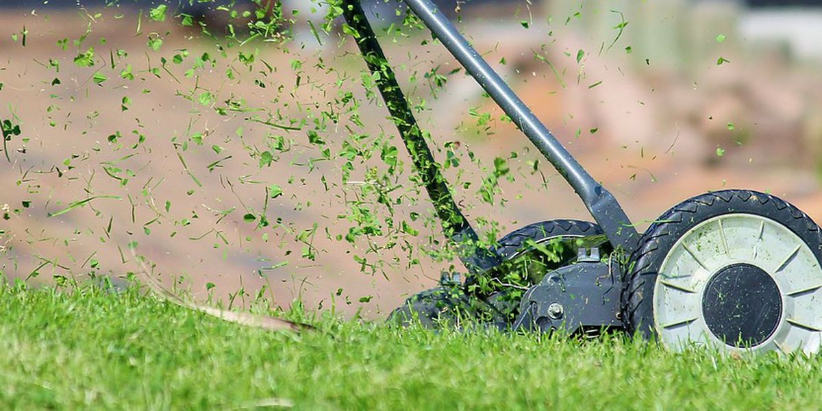 'Uber for lawn care' launches operations in Myrtle Beach