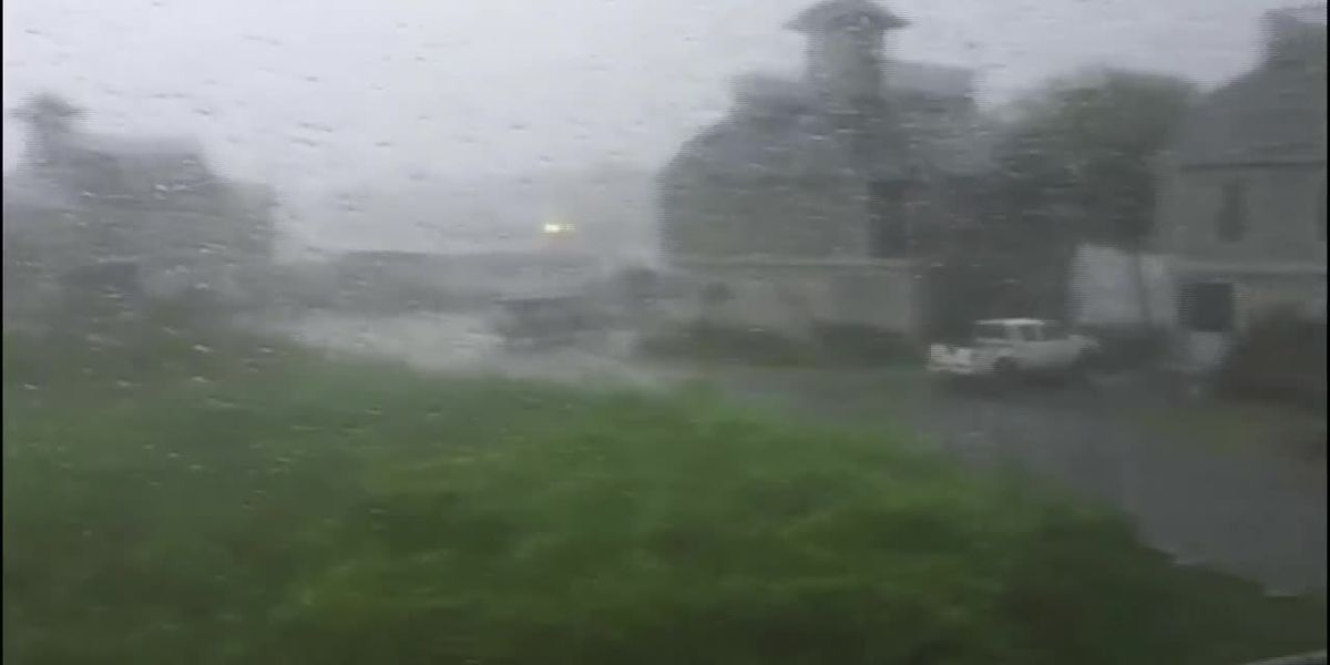 RAW: Heavy rain at Tidewater Plantation in Little River