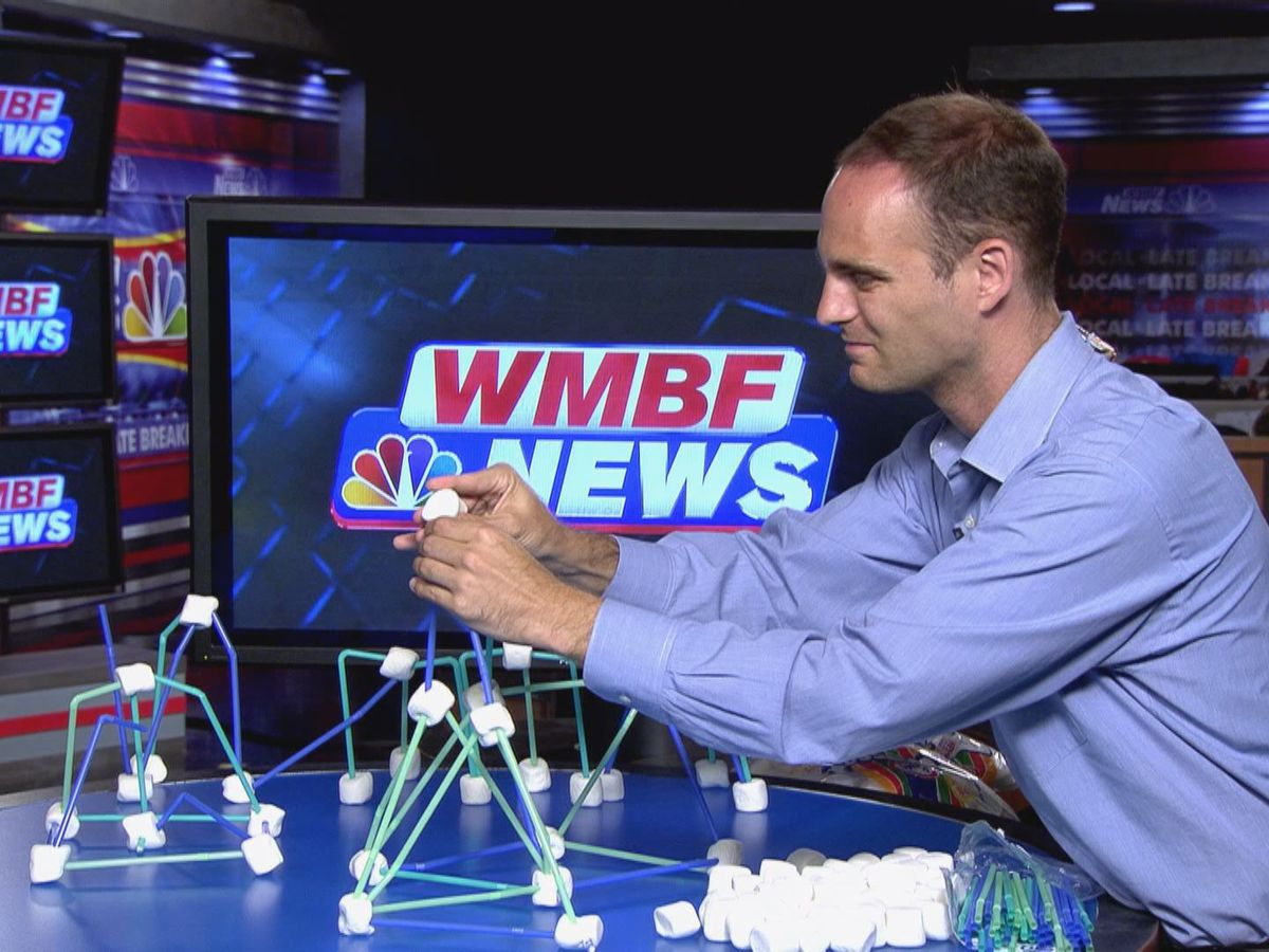 Summer of Science: Marshmallow Architecture