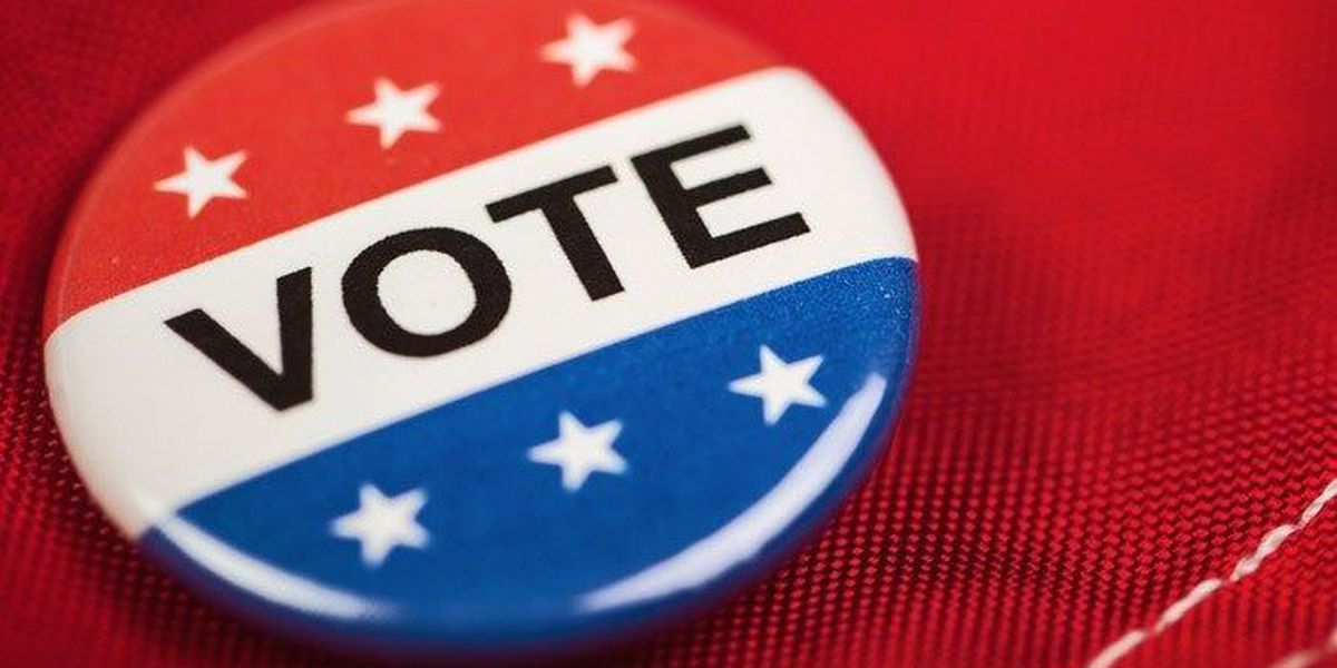 Make sure you're ready to vote in SC primaries - check your voting precinct