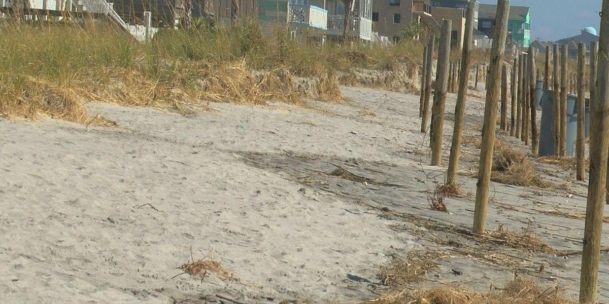 North Myrtle Beach rebuilding dunes as a temporary fix after Matthew