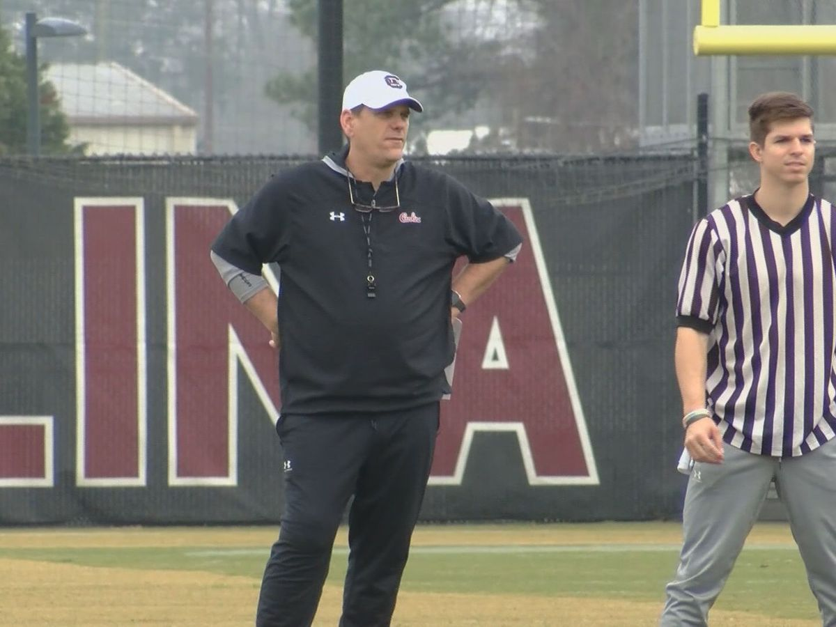Gamecocks Offensive Coordinator Mike Bobo accused of racial insensitivity by former players