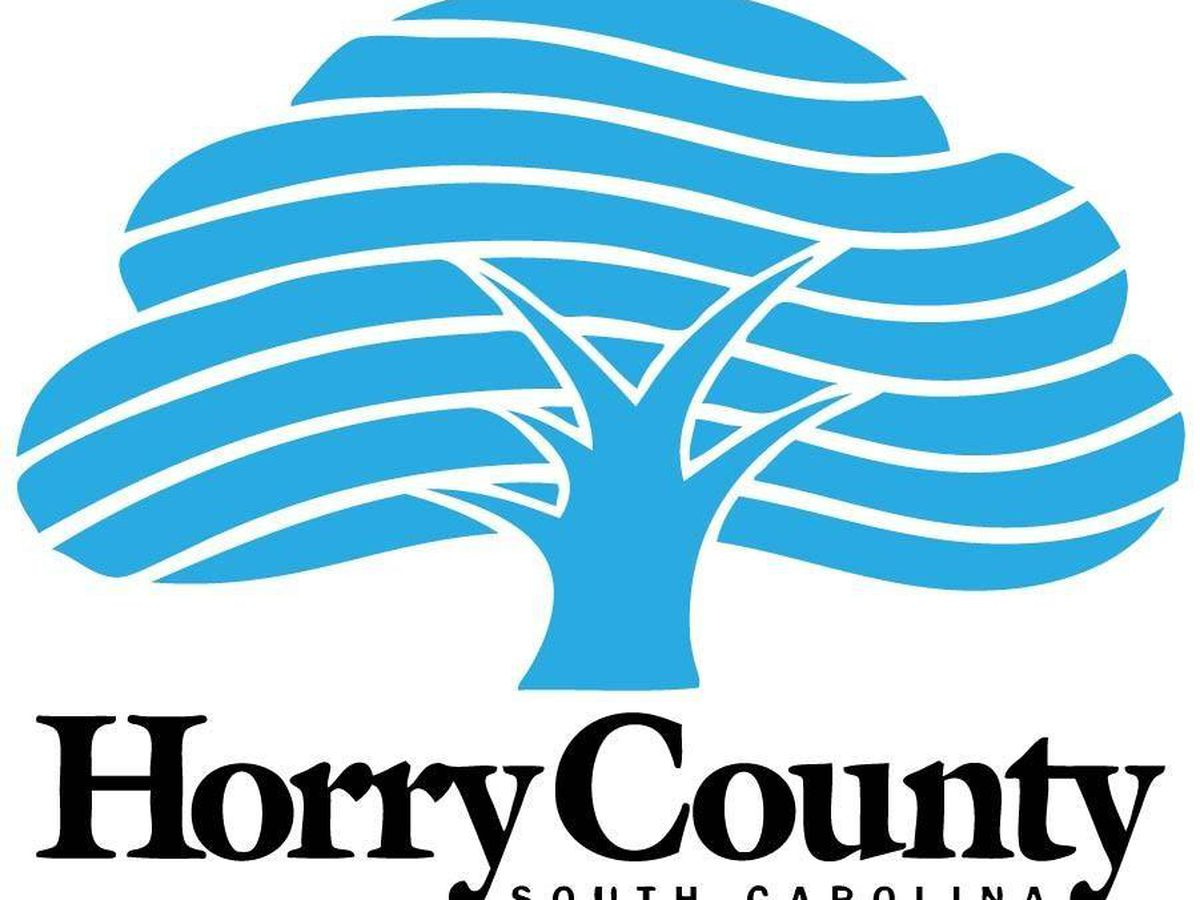 Horry County assessor to appraise property values to determine updated property values