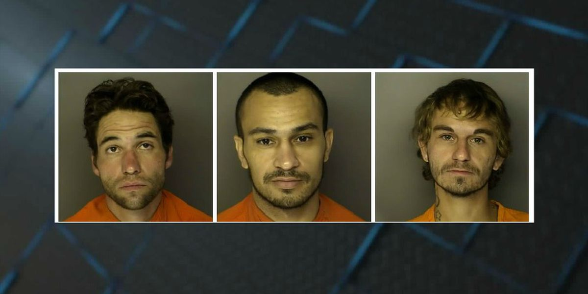 Three charged after multiple vehicle break-ins in Conway neighborhood
