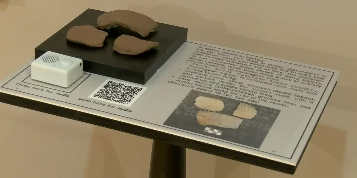 New sensory-friendly exhibit showcases 3-D printed artifacts at Horry County Museum