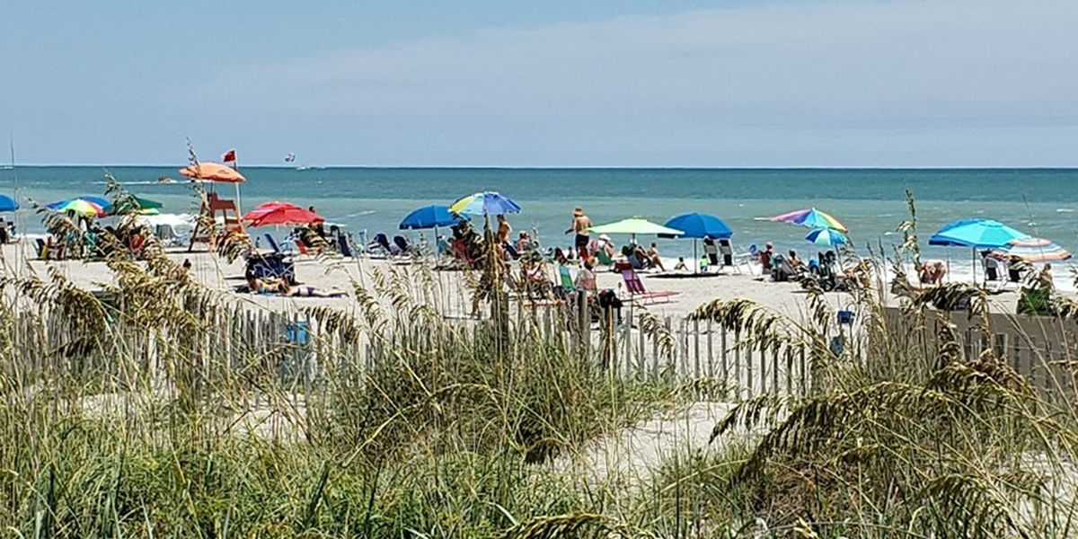 Myrtle Beach unveils 'Check My Beach' initiative to provide information on water quality