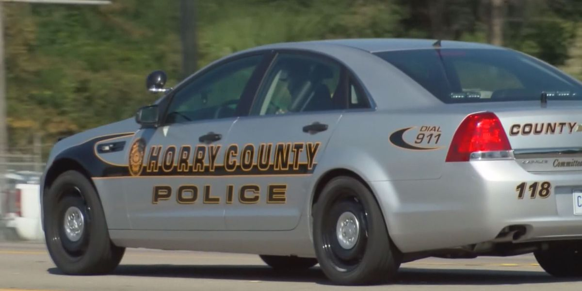 Horry County Council to consider pay scale for public safety employees