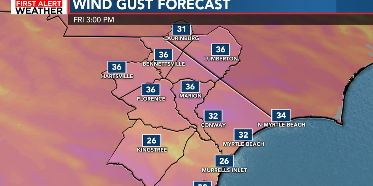 FIRST ALERT: Sunshine and gusty winds